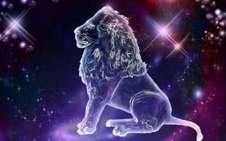 Гороскоп на неделю для мужчин львов