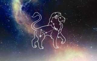 Любовный гороскоп на неделю для женщин львов